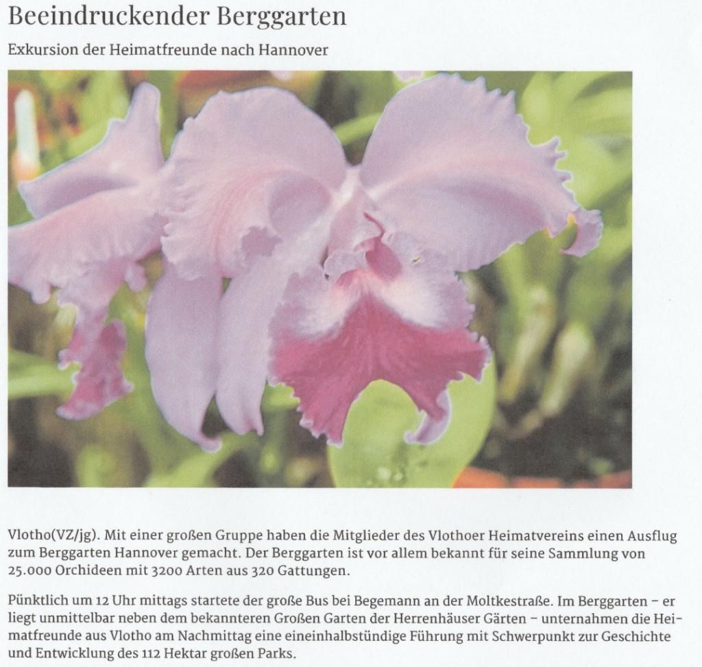 HAN.-BERGGARTEN I